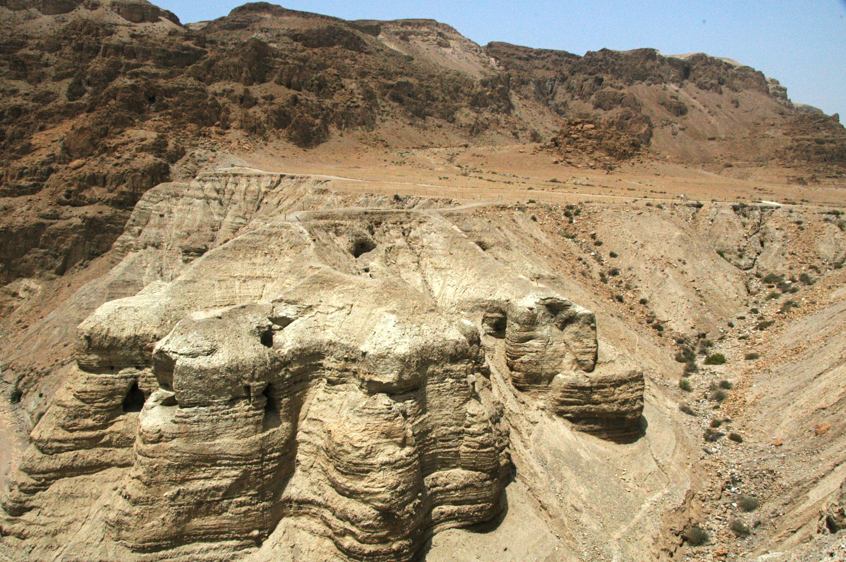 shepherd boy discovered dead sea scrolls accidentally Treasures by the sea by rebecca e-mail (see the dead sea scrolls after forty years, from symposium a bedouin shepherd boy found some of the scrolls.
