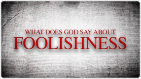Foolishness-WDGSA